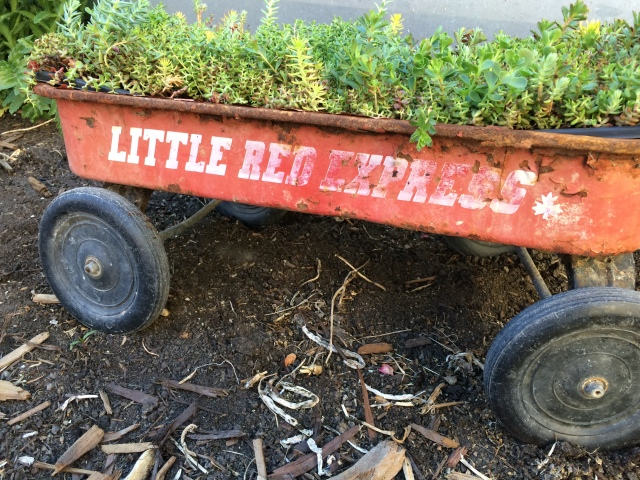 Vintage Little Red Express Wagon